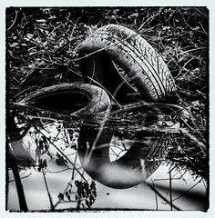 Rural Eyesore (Andy J Newman) Tags: rubbish lake tyre country nikon monochrome puddle blackandwhite reflection stream abandoned flytip rural d810 silverefex