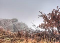 2019 - Vacation - Wichita Mountains Wildlife Refuge (zendt66) Tags: zendt66 zendt nikon d7200 wichitamountains wildlife refuge fog granite mountains winter barren