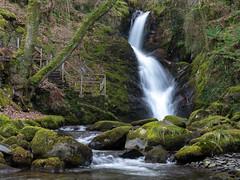 Dolgoch Waterfall (Howie Mudge LRPS BPE1*) Tags: dolgochfalls waterfall cascade woods woodland forest water longexposure gwynedd wales cymru uk panasonicg9 mft m43 microfourthirds travel adventure leicadg1260f2840 panasonicdcg9