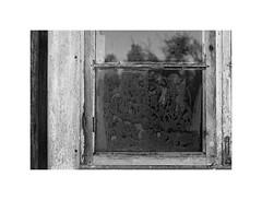 LW XIX ([ Time - Beacon ]) Tags: tb texture shadows reflections window frost frostonglass iceflowers decay rural bw blackandwhite blackwhite bnw monochrome