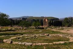 Valle dei Templi, Agrigento, Sicily DSC_8870 (tango-) Tags: valledeitempli agrigento sicilia sicily italia italy sicilya sicile σικελία szicília 시칠리아 סיציליה сицилия صقلية tiberiofrascari