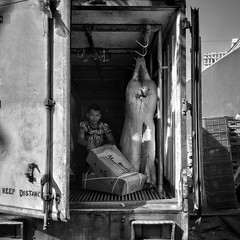 Year of the pig (Stitch) Tags: delivery van street photography sidewalk pig quezon city manila philippines weekly weeklyplustens