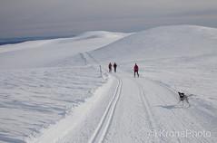 Winterwonderland, Norefjell, Norway (KronaPhoto) Tags: reiser natur