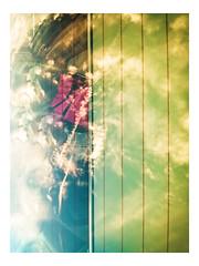 Illuminosis - Light and Luminance_Web 1_Scaled-X (johann.kisaame) Tags: abstract clouds dramatic dynamic glassart impressionistic light luminance red reflection shadows sky sunlight windows artistic ethereal illumination prismatic reflections plymouthmeeting pennsylvania unitedstatesofamerica us topf25