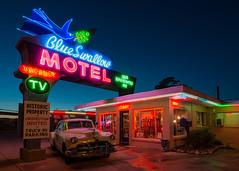Tucumcari 1 (fyrcdf) Tags: tucumcari nm newmexico bluehour blue neon vacancy motel blueswallow motherroud route66 66