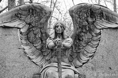 Haserot Angel (theshadowwolf1105) Tags: angel cemeteries cemetery nikonphotography abandoned decay statues tombstones graves gravemarker tomb urbanexploration urbanex urbanphotography haserotangel