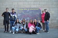 IX Fira d'Entitats de Voluntariat Social de Lleida (29.03.19)