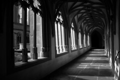 Light and Shadows / Ombres et Lumiere (CTfoto2013) Tags: ambiance mood atmosphere peaceful paisible monument architecture cloitre cloister eglise church kirche light lumiere shadows ombre perspective colonnes columns arcades noiretblanc blackandwhite nb bn bw blancoynegro monochrome mainz mayence germany allemagne panasonic lumix building arch wall ststephanchurch egliseststephane claustro gothique stonework gothic