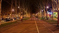 Avenue de Sceaux (Chrisar) Tags: avenue perspective tripod trépied poselongue longexposure nikond750 dxophotolab angénieux3570