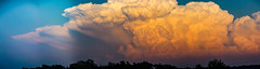 050212 - Nebraska Sunset Thunderheads 062 (Pano) (NebraskaSC Severe Weather Photography Videography) Tags: flickr nebraskasc dalekaminski nebraskascpixelscom wwwfacebookcomnebraskasc stormscape cloudscape landscape nebraska weather nature awesomenature storm clouds cloudsday cloudsofstorms cloudwatching stormcloud daysky weatherphotography photography photographic weatherspotter chase chasers newx wx weatherphotos weatherphoto day sky magicsky darksky darkskies darkclouds stormyday stormchasing stormchasers stormchase skywarn skytheme skychasers stormpics southcentralnebraska orage tormenta light vivid watching dramatic outdoor cloud colour amazing beautiful thunderheads stormviewlive svl svlwx svlmedia svlmediawx