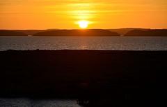 The Day Begins (pjpink) Tags: sun sunrise morning lakenasser lake desert nubia golden abusimbel egypt january 2019 winter pjpink 2catswithcameras