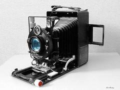 Voigtlaender_Bergheil_Mod_2_6x9_BW_farb_tx_P1340195 (said.bustany) Tags: bruchköbel hessen voigtländer bergheil model2 1928 6x9 heliar laufboden plattenkamera sammlung collection public