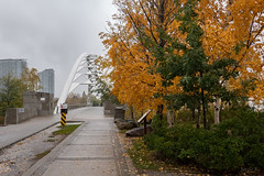 Time to Turn Around (Jocey K) Tags: sonydscrx100m6 triptocanada ontario canada autumn trees walkway buildings architecture clouds sky autumncolours leaves pavement bridge