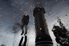 L'homme tête de feuille et la colonne Morris (Paolo Pizzimenti) Tags: modèle couple glamour reflet colonne wilson pluie feuille paolo paris olympus zuiko omdem1mkii 12mm f2 45mm f18 film pellicule argentique