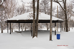 DSE_6470 (pezlud) Tags: 20190223 snow winter winterscenes trollwoodpark fargo nd usa landscape white mantleofwhite seaofwhite dashesofcolor color