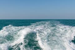 Waves (JarkkoS) Tags: 2470mmf28eedafsvr d850 dubai horizon ocean persiangulf sea uae water unitedarabemirates ae