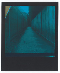 0030 Alley (romain@pola620) Tags: pola polaroid analog analogue analogique argentique film pellicule low lowfi lofi square carré impossible impossibleproject originals polaroidoriginal 600 instant one onestep onestep2 duochrome blue bleu londres london uk greatbritain muswell muswellhill black blackframe expired