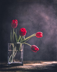 Red tulips (Ro Cafe) Tags: helios58mmf2 nikond600 red tulips flowers glass naturallight vase wood textured stilllife