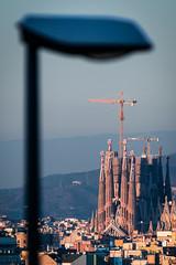 Sagrada Familia (Ramon InMar) Tags: teleobjetivo longlens barcelona sagradafamilia composition goldenhour lamp farola cityscape city paisatgeurba urbana urban