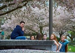 Vivitar 28-200mm f/3.5 Cherry Blossom Friends in Cherry Blossom Park 1 (coljacksg) Tags: vivitar 28200mm f35 cherry blossom friends park vintage lens test salem oregon capitol mall spring oneill jack