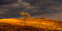 _D854944e (jrash168) Tags: nebraska sandhills burwell calumus landscape sunset beauty