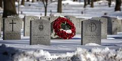 Burlington Ontario   2019 (John Hoadley) Tags: gravestones woodlandcemetery burlington ontario 2019 february canon 7dmarkii 100400ii f56 iso250 wreath