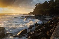 Golden Blaze (armct) Tags: naturessilhouettes snapperrocks beach surf rocks sand sunrise morning cloud coastline seawall wall ocean pacific cliff observer tide incoming spray horizon skyline waves foam goldcoast tweedheads coolangatta glow glisten gold gleam glare summer