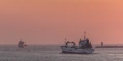 IJmuiden (tribsa2) Tags: nederlandvandaag sunrisesunset sunset seaside sky shoreline sea ship vessel pier noordzee nederland netherlands northsea