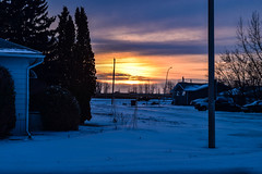 Sunset on a cold and icy day (darletts56) Tags: sky blue cloud clouds purple orange yellow gold golden white tree trees snow silhouette black green brown house houses home homes vehicle vehicles highway road street pole poles post light lights lamp lamps standard winter cold sunset sun travel ice icy reflection saskatchewan canada prairie grey line lines wire wires