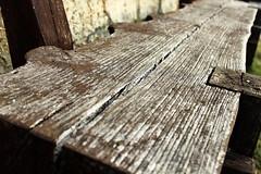 Bench / Pad (Ibolya Mester) Tags: