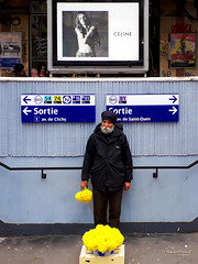 Street - Daffodils (François Escriva) Tags: street streetphotography paris france people candid photo rue colors sidewalk man exit underground subway entrance daffodils flowers yellow peddler hawker metro ad billboard celine black white monochrome brand