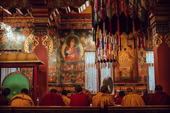 Monks of Boudha (danielhibell) Tags: kathmandu nepal travel asia discover explore world street streetphotography people religion culture ambience mood buddhism hinduism colour light praying moving special