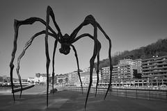La araña negra de Bilbao (RodionR) Tags: bn bw blancoynegro blackandwhite noiretblanc biancoenero monocromo monochrome monotone bilbao araña art arte escultura sculpture