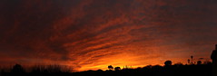 Sunset 3 2 19 #25_stitch e (Az Skies Photography) Tags: sun set sunset dusk twilight nightfall sky skyline skyscape rio rico arizona az riorico rioricoaz arizonaskyline arizonaskyscape arizonasunset clouds cloud march 2 2019 march22019 3219 322019 canon eos 80d canoneos80d eos80d canon80d red orange yellow gold golden salmon black panorama arizonasky