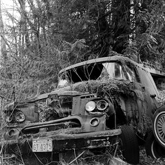 Moss Covered Dodge Power Wagon (bac1967) Tags: rolleiflexautomattlr rolleiflex rolleiflexautomat rolleiflexk4b tlr twinlensreflex mediumformat 6x6 120film 120 ilfordpanfplus50 ilford ilfordfilm ilfordpanf50 pan panfilm blackandwhite black blackandwhitefilm blackwhite film monochrome monotone pacificnorthwest pnw washington washingtonstate wa white rodinal rodinal150 ro9 ro9oneshot hwy2 hoghway2 squareformat square decay decayed decaying ruraldecay rusty rural rust crusty abandoned weathered index indexwa skykomish skykomishriver northforkskykomishriver moss oldtruck truck waggon wreck broken crash woods roadside dodge power wagon