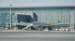 Qatar airways Boeing 777-300er A7-BEP Doha Hamad airport (Michele Centurelli) Tags: nikon d7200 18105 qatar airways terminal a7bep boeing 777 777300er doha hamad airport apron parked lightroom