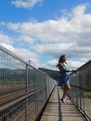 Bridge and Nature (naoryvi17) Tags: viaje puente riel tren san javier valdivia chile paisaje naturaleza