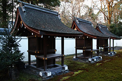 SDQ_1130 (koyaman3422) Tags: 京都 kyoto sigma sdquattro 1770mm 下鴨神社