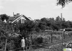 tm_6425 - 1938 (Tidaholms Museum) Tags: svartvit positiv gruppfoto people människor bostadshus stuga familj family cottage trädgård 1938 1930talet girls flicka