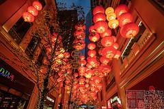 IMG_3045 (Edward Ha) Tags: 佳能 香港 灣仔 利東街 新年 農曆新年 燈籠 夜景 canon hongkong wanchai leetungave newyear chinesenewyear lantern nightscene night