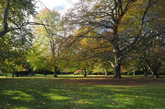 Henrietta Park (LeftCoastKenny) Tags: england day12 bath trees grass people bench