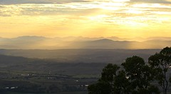 Golden rays over the Scenic rim... (Anni - with camera) Tags: mttamborine sequeensland scenicrim mountains australia eucalypt rainforest subtropical