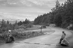 Ticknock Hill Walk February 2018-15 (romoophotos) Tags: cianmooney amateur2018 black country countryside dublin forest hill ireland rural ticknock trees walk white ãabhamooney