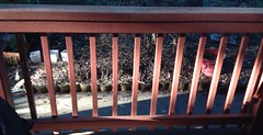 While on the exercise bike I noticed the cross light striking the railings. (spelio) Tags: pattern sidelight railings