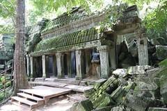 Angkor_Ta Prohm_2014_25