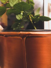 Copper pot. 70/365