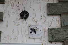 CKuchem-6108 (christine_kuchem) Tags: 17 2019 303 abriss braunkohle deutschland dorf dörfer forst hambacher kohle manheim nrw nordrhein revier rheinland sonntag spaziergang tagebau umsiedlung wald waldspaziergang westfalen zerstörung rheinischer