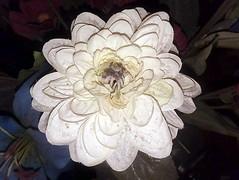 Artificial Flower (splattergraphics) Tags: flower artificial flash