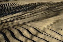 Arado Pixelado (enekopy) Tags: campo arado siembra alava ondas surcos