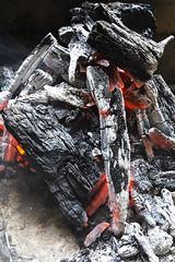 My Life (Jussi Salmiakkinen (JUNJI SUDA)) Tags: suginamicity tokyo japan water wadaboripark spring maaliskuu kevät 杉並区 東京 suginami bonfire life 焚き火 charcoal